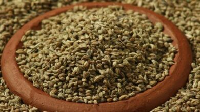 Photo of Weight Loss: Healthy Weight Loss Tips, Add Celery In Your Diet, Ajwain Benefits